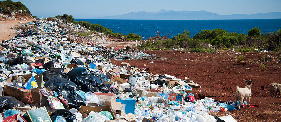 Large piles of rubbish near the coast with a goat.