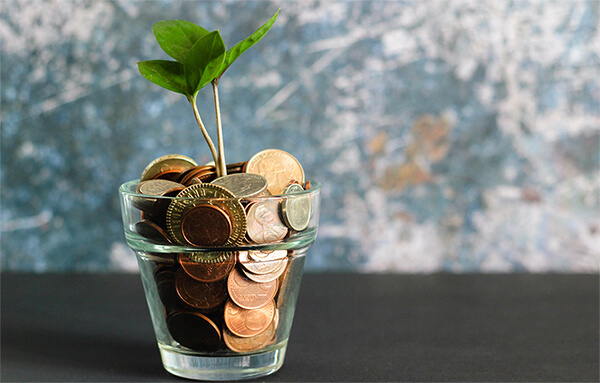 Seedling growing from coins.
