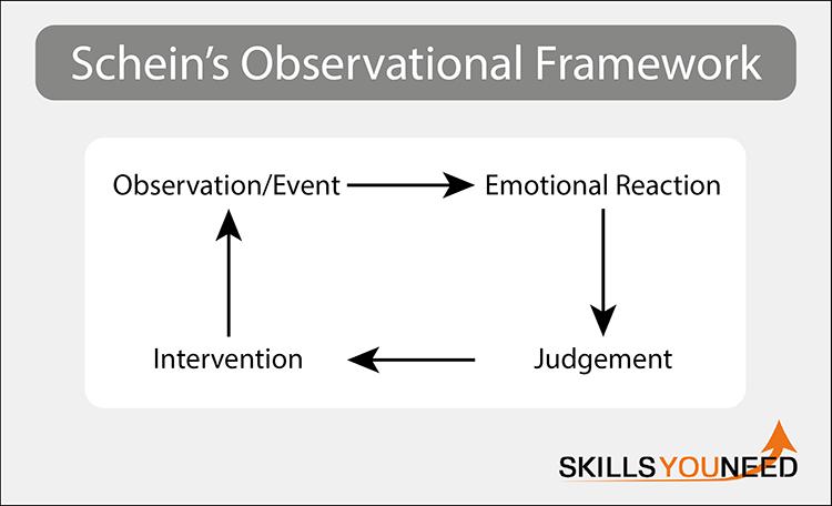 Schein's Observational Framework