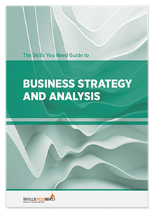 The Skills You Need Guide to Business Strategy and Analysis